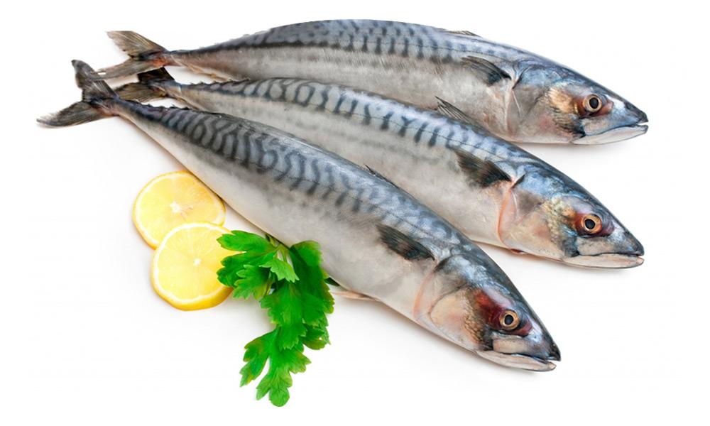 sea foods sausage house mackerel